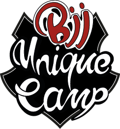 bjj unique camp logo